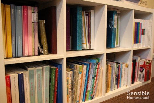 homeschool room curriculum IKEA shelves