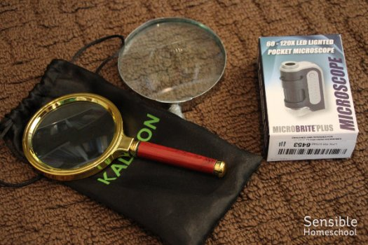 Homeschool science magnifying glasses and pocket microscope