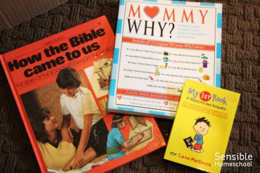 Bible and apologetics books including How the Bible Came to Us, Mommy Why?, and My 1st Book of Questions and Answers