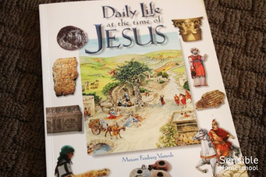 Daily Life at the time of Jesus book by Miriam Vamosh