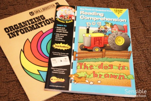 Organizing Information and Reading Comprehension homeschool workbooks