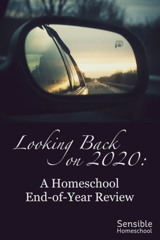 Looking back on 2020: A homeschool end-of-year review