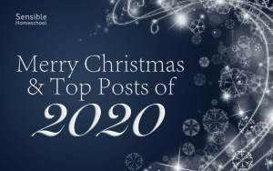 Merry Christmas & Top Posts of 2020