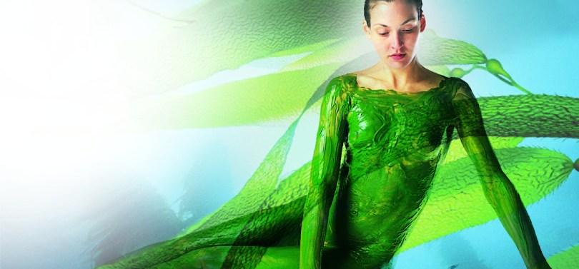 Alghe Repechage Talassoterapia Modellante Corpo