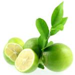 olio-bergamotto