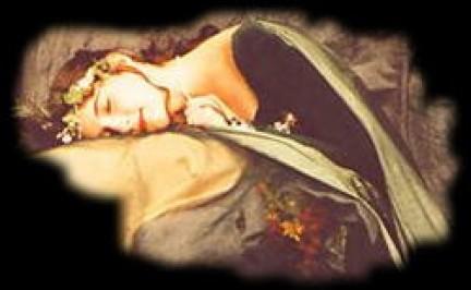 sonnosogni