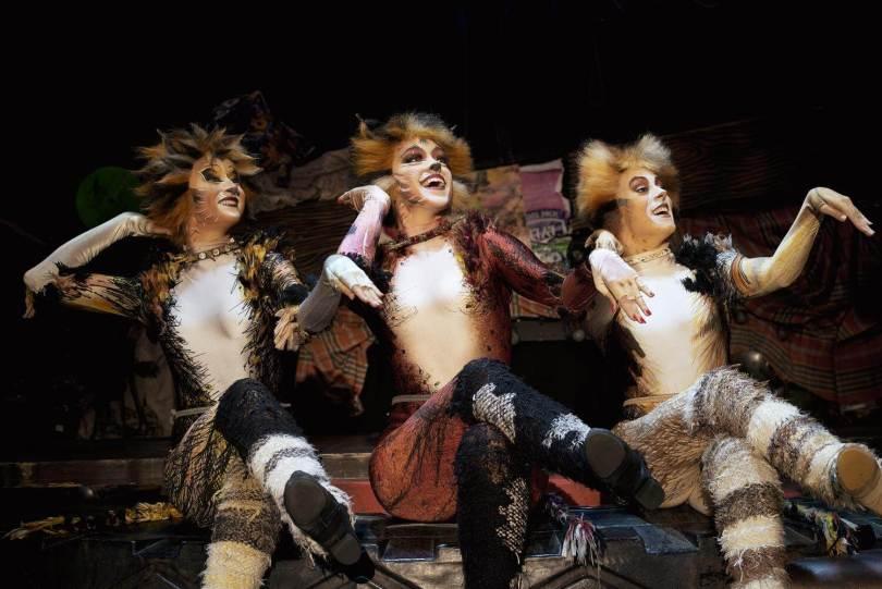 gatto-cats-musical