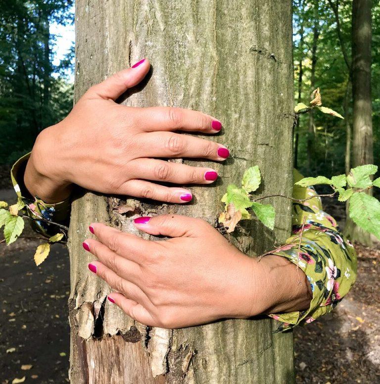forest-bathing-dal-giappone-la-terapia-anti-stress