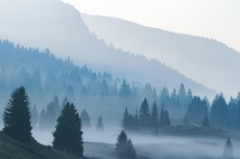 Davide Biagi paesaggio Alpe Cimbra