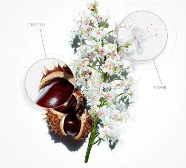 Nutri-Lumière, l'idea luminosa di Clarins