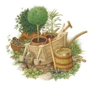 casa-delle-piante