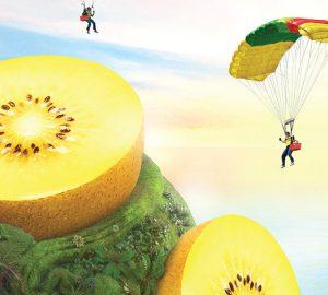 sun-gold-il-kiwi-giallo-di-zespri-esplosione-di-gusto-e-benessere