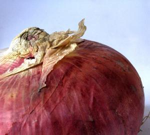 La cipolla rossa di Breme: un presidio Slow Food
