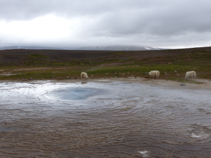 paysage hveravellir voyage islande
