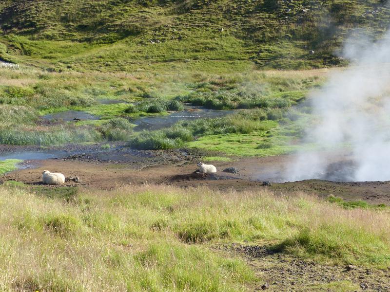 Voyage en Islande, Hveragerdi
