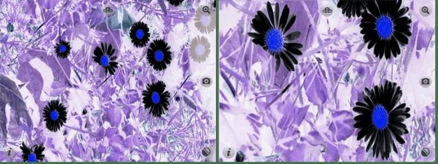 ItZooms Screenshot