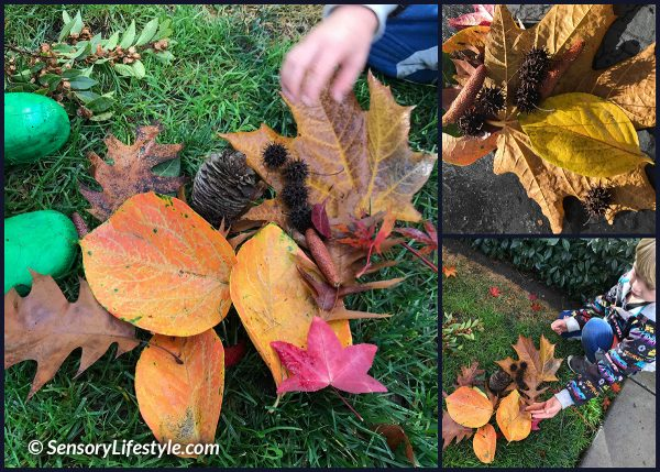 Leaf exploration