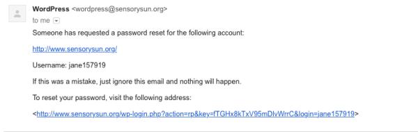 reset password email screenshot