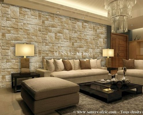 Living Room Decoration Ideas In Hindi