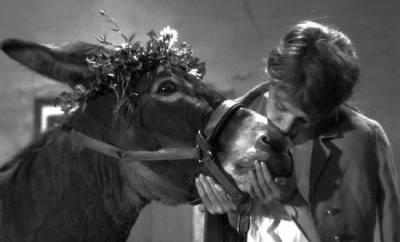 Au hasard Balthazar, 1966