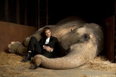 Robert Pattinson con l'elefantessa Rosie in Come l'acqua per gli elefanti di Francis Lawrence
