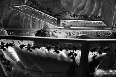ORINO 30 - La Biancaneve muta e in b/n di Pablo Berger, trailer e foto