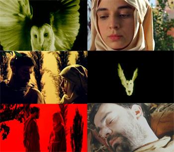 2003 – Cântico das Criaturas - OMAGGIO A MIGUEL GOMES - ONDE TFF30