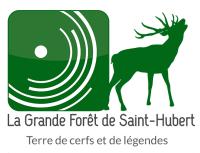 Grande forêt de saint Hubert