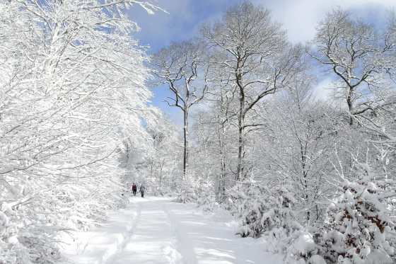 microaventure hivernale