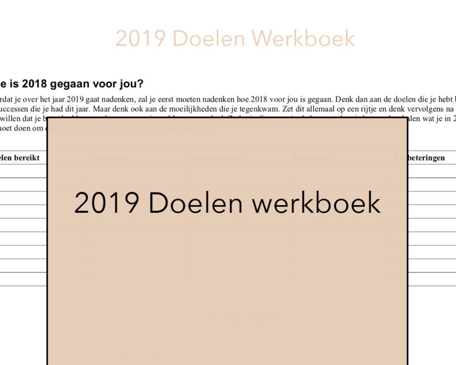 2019 doelen werkboek