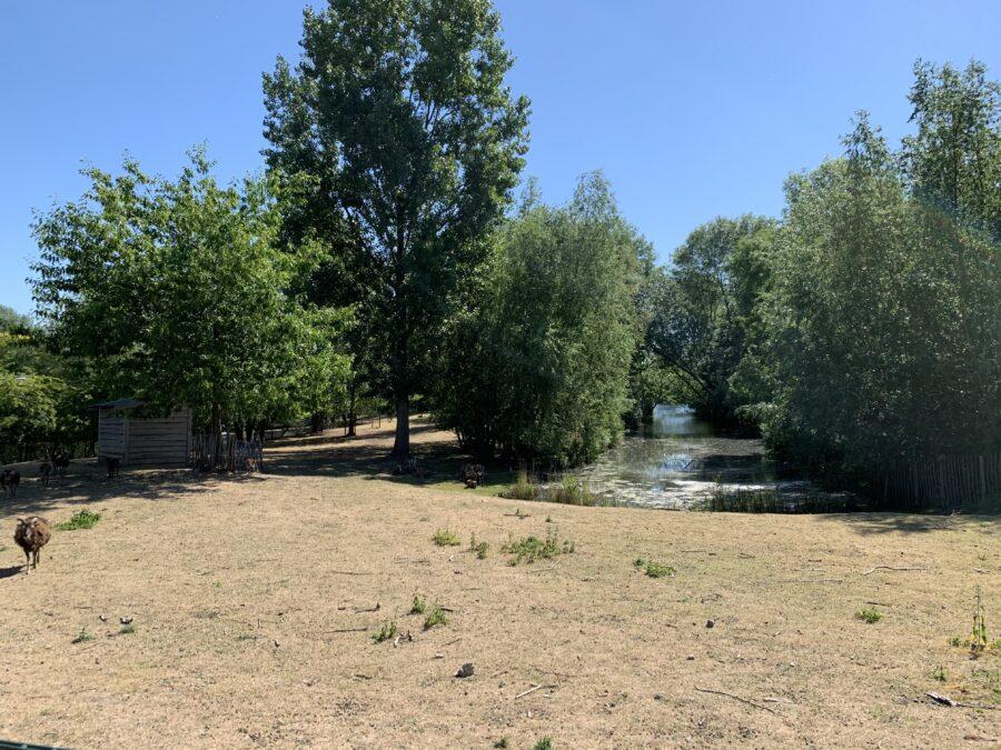 Mijn leven in foto's #124 - Natuurtuin Leerdam