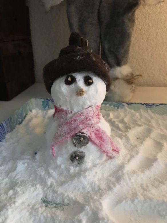 Mijn leven in foto's #99 - Sneeuwpop