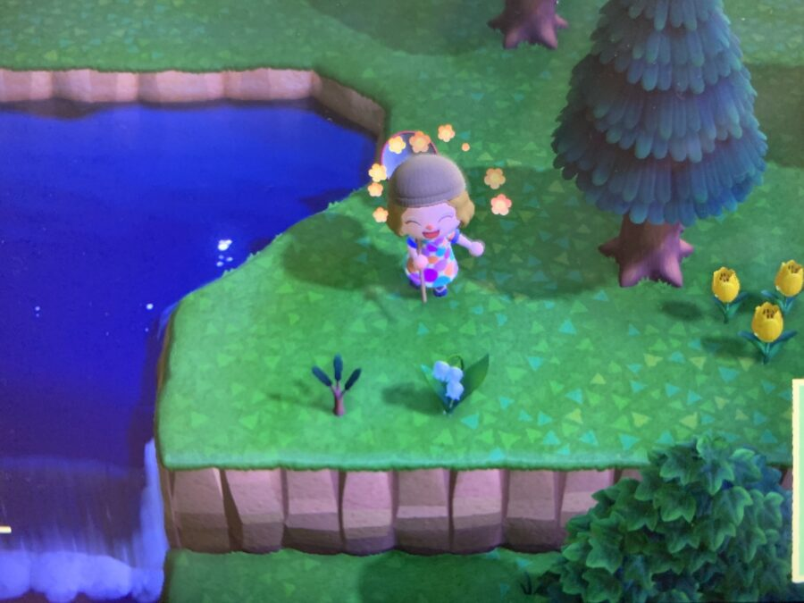 Mijn leven in foto's #124 - Animal Crossing
