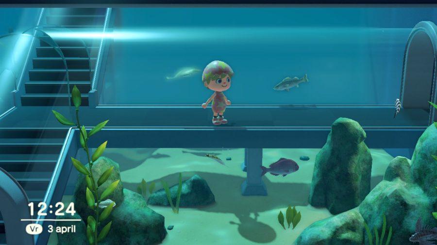 Animal Crossing - New Horizons - museum vissen