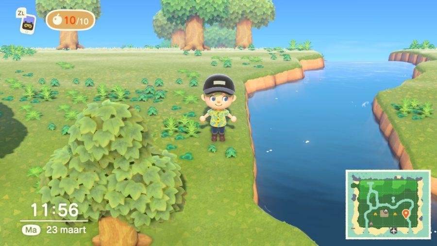Animal Crossing - New Horizons - poppetje