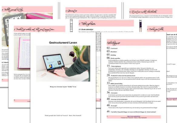 """Miss Sentinelli Partnerprogramma - Geld verdienen met het promoten van mijn ebook """"Gestructureerd Leven"""""""