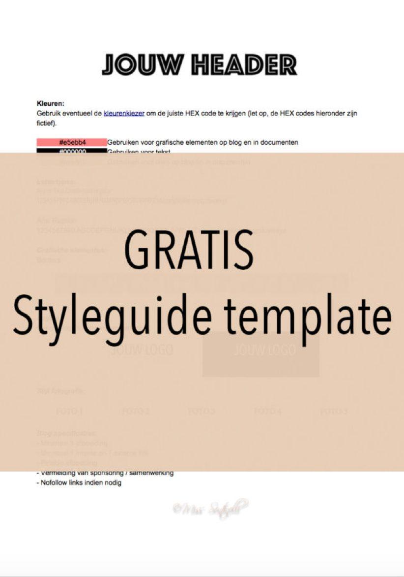 Gratis styleguide template