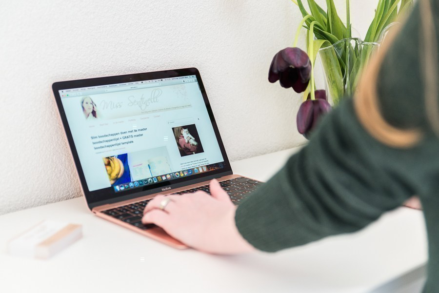 Hoe ik in april 1.624,18 euro (+ 185 euro aan barterdeals) verdiende met bloggen en werk als Virtual Assistant