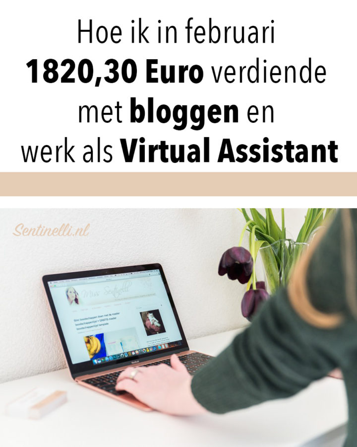Hoe ik in februari 1820,30 Euro verdiende met bloggen en werk als Virtual Assistant