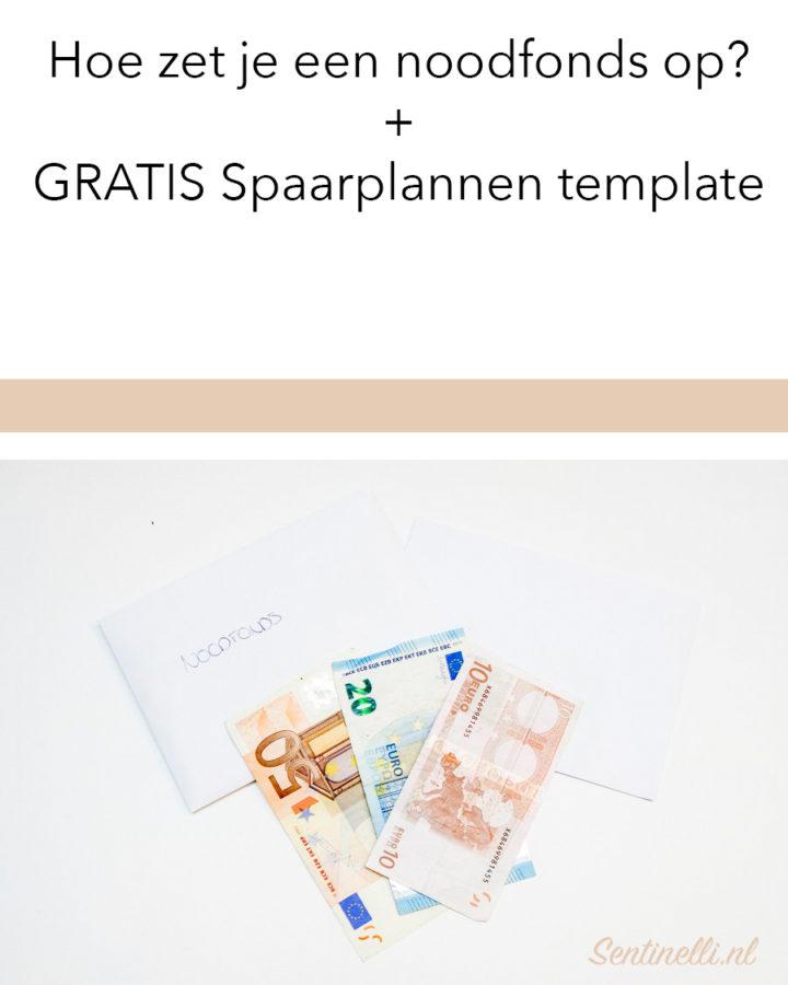 Hoe zet je een noodfonds op? + GRATIS Spaarplannen template