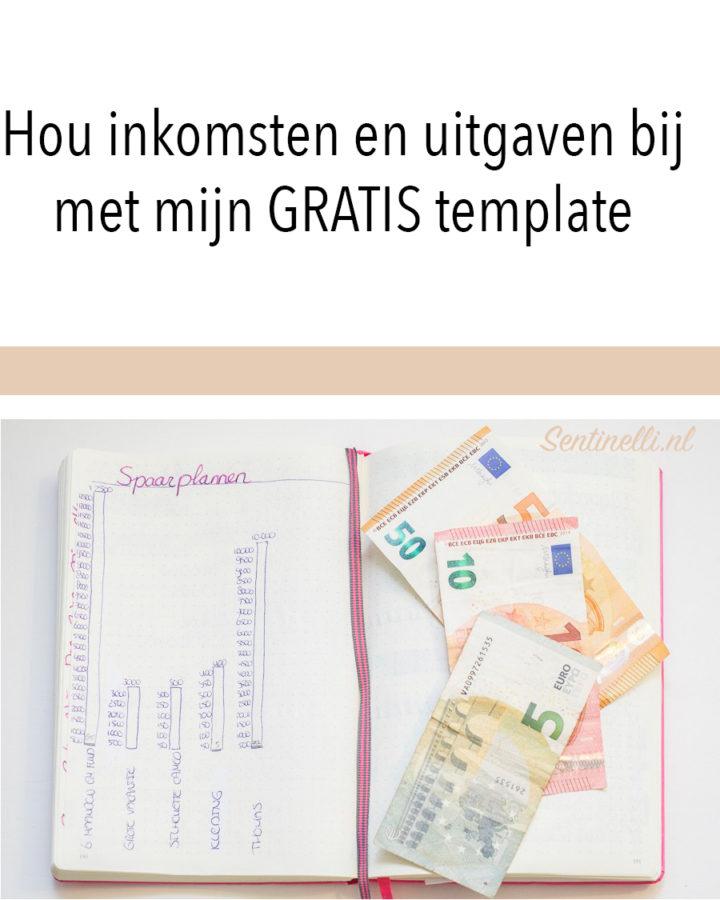 Hou inkomsten en uitgaven bij met mijn GRATIS template