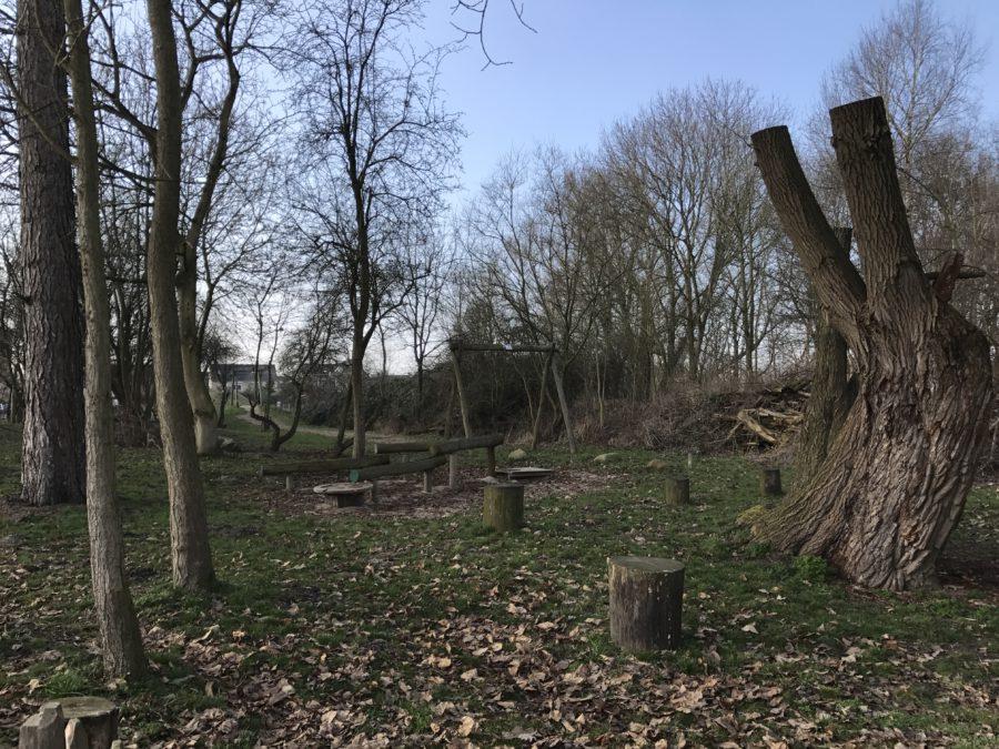 Mijn leven in foto's #53 - Natuurtuin Leerdam