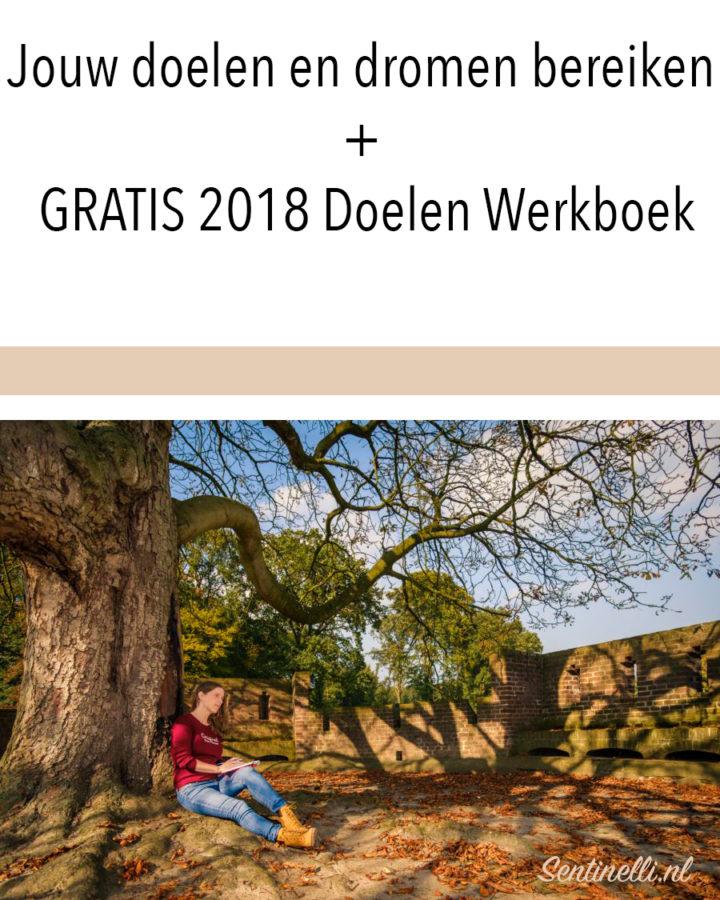 Jouw doelen en dromen bereiken + GRATIS 2018 Doelen Werkboek