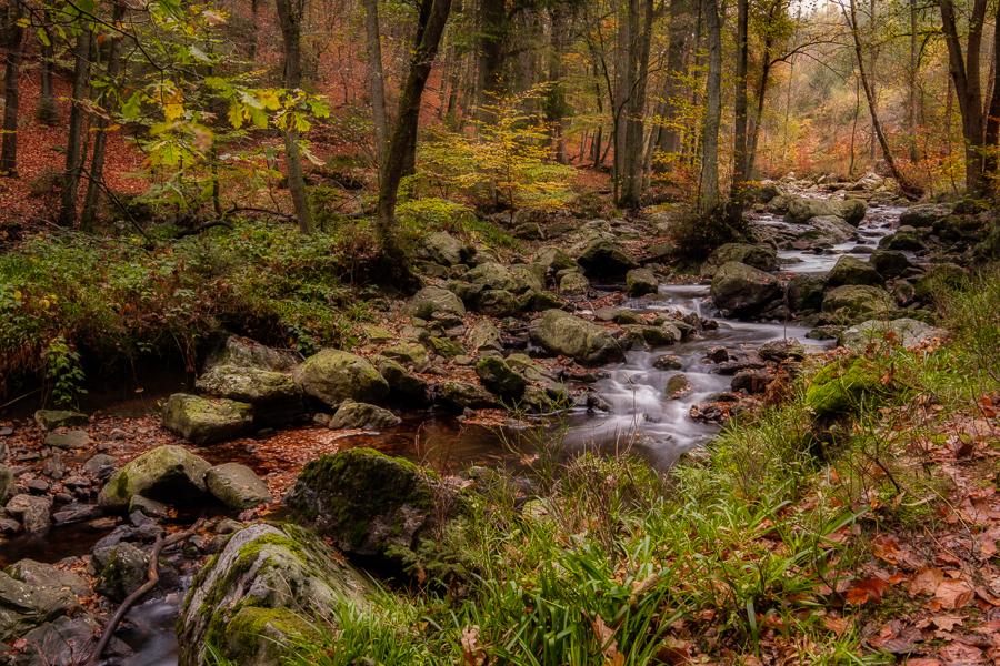 Prachtige herfstkleuren in vallée de La Hoëgne