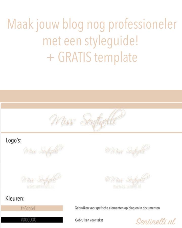 Maak jouw blog nog professioneler met een styleguide! + GRATIS template