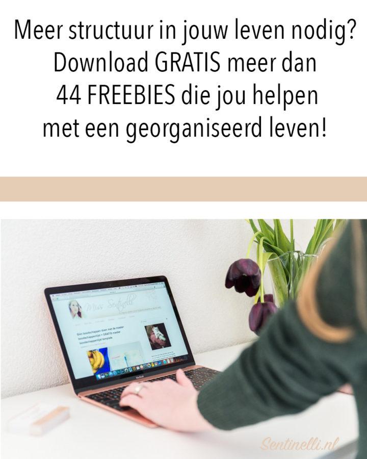 Meer structuur in jouw leven nodig? Download GRATIS meer dan 44 FREEBIES die jou helpen met een georganiseerd leven!