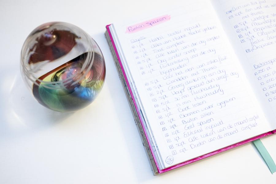 Mijn Bullet Journal collectie