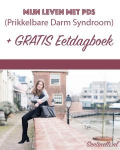 Mijn leven met PDS (Prikkelbare Darm Syndroom) + GRATIS Eetdagboek