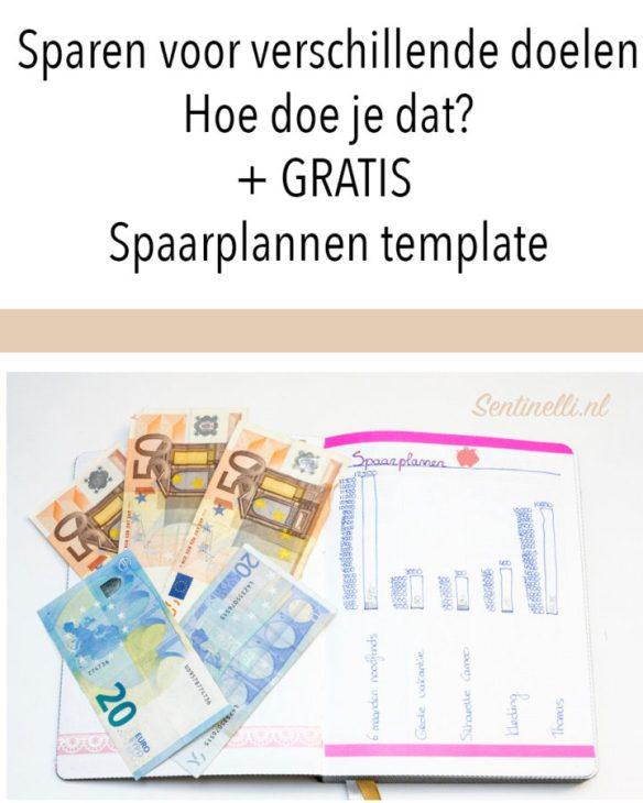 Sparen voor verschillende doelen Hoe doe je dat? + GRATIS Spaarplannen template
