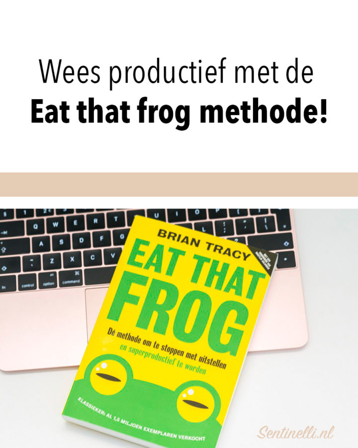 Wees productief met de Eat that frog methode!